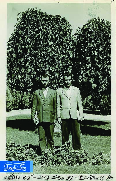 سمت چپ شهید کریمی- دوران دانشجویی در کوی دانشگاه تهران- حدود سال 1350- توضیح عکس از خود شهید است که نوشته جلوی ساختمان شماره 4 جلوی درخت توت