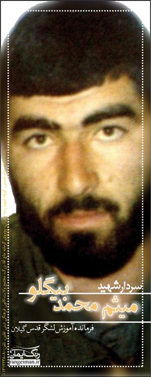سردار شهید بیگلو