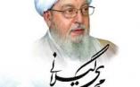 شرحی تفصیلی از زندگی و مبارزت مرحوم آیت الله محمد محمدى گیلانى