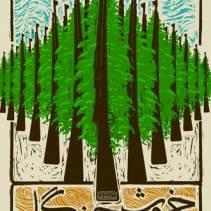 پوستر خروش جنگل